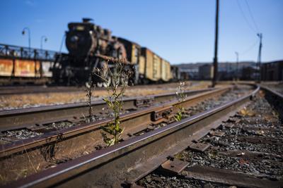 Railroad rails expansion joints